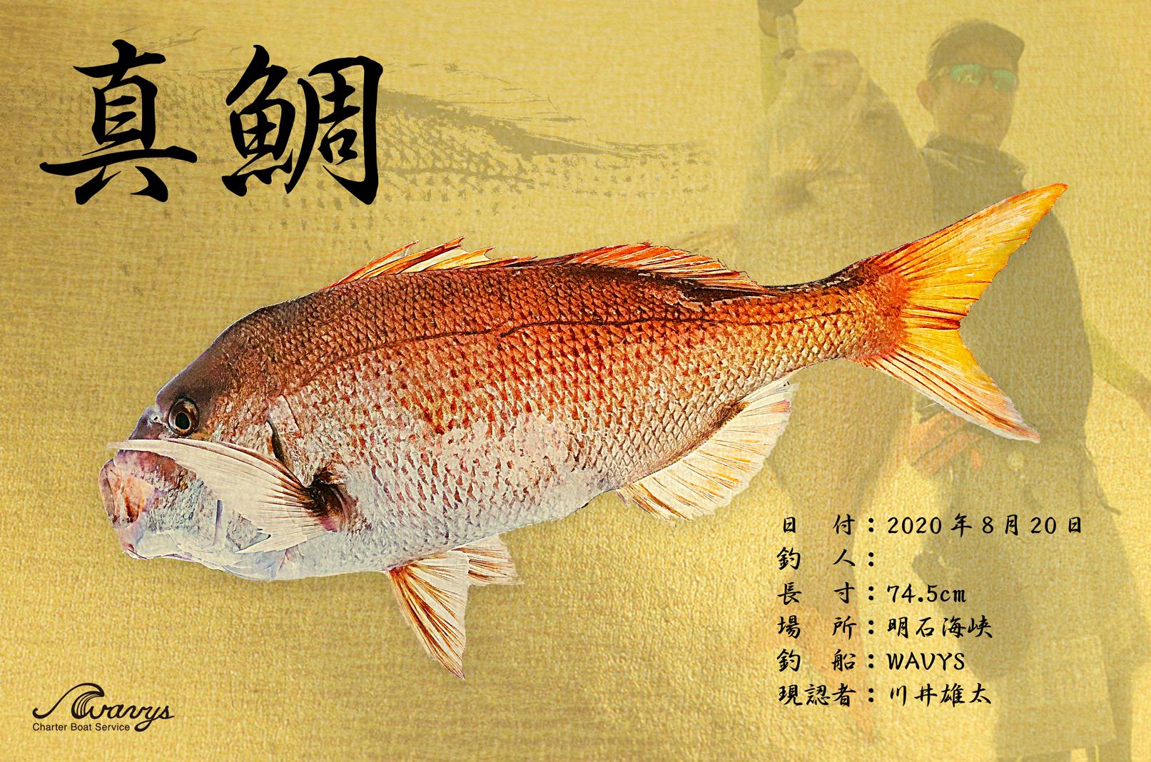 デジタル魚拓サービスはじめます